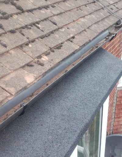 flat roof march 2020