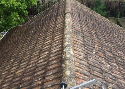 Hand Cleaned Roof Project
