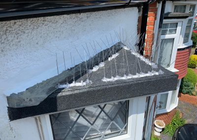 Bay Window Roof in Hove