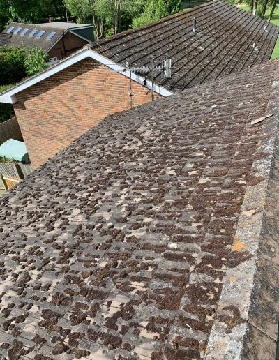 Roof cleaning May 2020